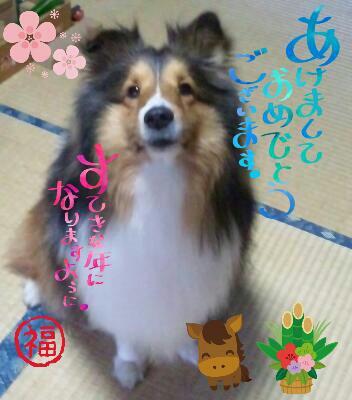 fc2_2014-01-03_10-04-26-692.jpg