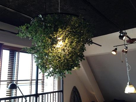 植物照明!