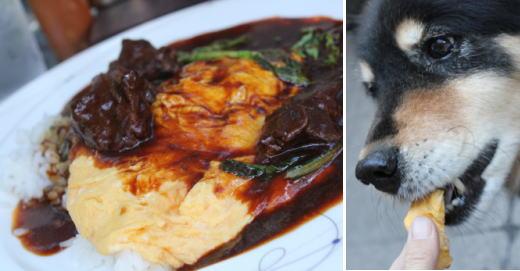 牛ほほ肉煮込みソースのオムライス