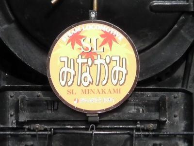 SANY0415.jpg