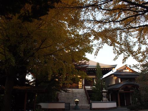 紅葉☆松蔭神社~大吉寺