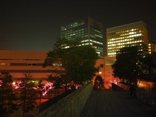目黒川みんなのイルミネーション2011