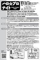 2010/11/13東京ハロナイ フライヤー(裏)