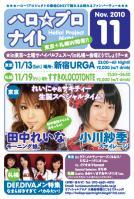 2010/11/13東京ハロナイ フライヤー(表)