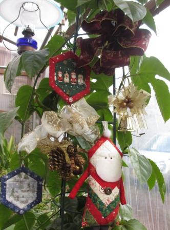パッションフルーツのクリスマス