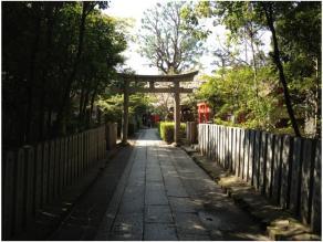 京都240418_03