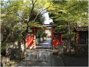 京都240418_05