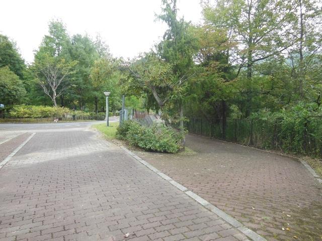 川よこサイト入口(640)