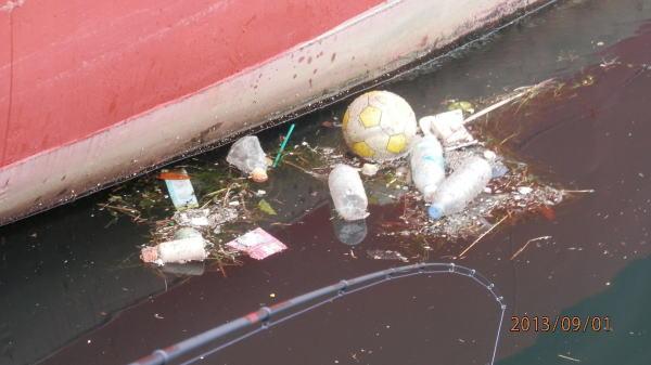 雨が降れば、ゴミも流れてきます ・・・