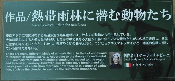 熱帯雨林に潜む動物たち 001