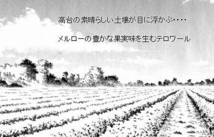 高台のブドウ畑
