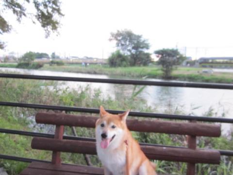 2011_0911_175929-IMG_2454.jpg
