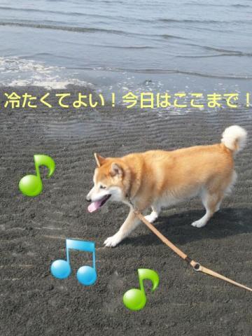 20130814_141946.jpg