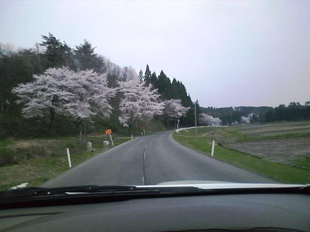 2012_day01_01.jpg