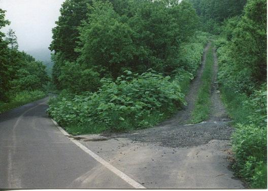 美国川滝 (1)