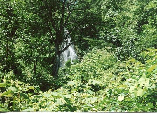 美国川滝 (5)