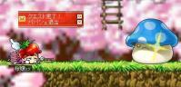 ぱぱvs桜★