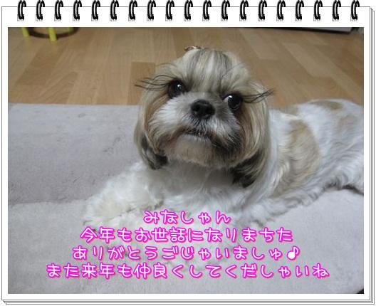 10123012-2.jpg