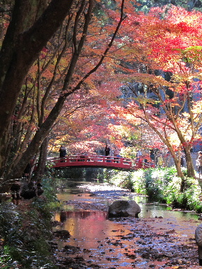 2011_1204遠州お宮巡り0039