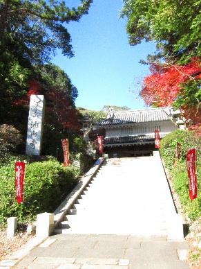 2011_1204遠州お宮巡り0093