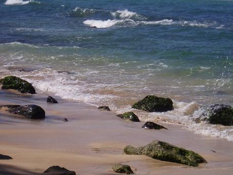 海がめビーチ