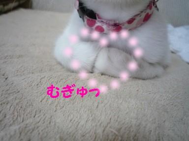 2010_0717_132125-P1010676  2