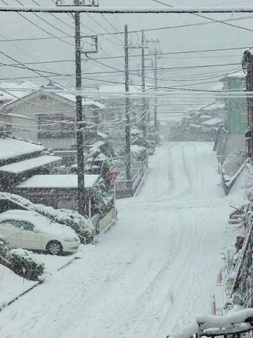 2雪景色 006