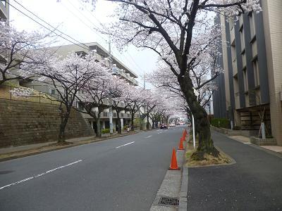 明澄ちゃん宅あとタマプラ夕飯 002