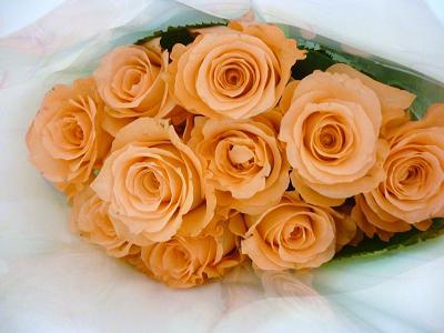お花やヤマトの 013