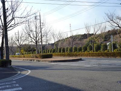 2012_0110_142107-P1010470.jpg