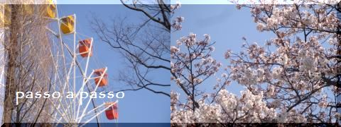 DSC07195.jpg