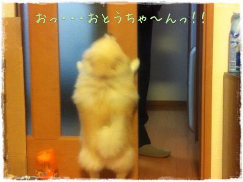 おっ・・・おとうちゃ~んっ!!
