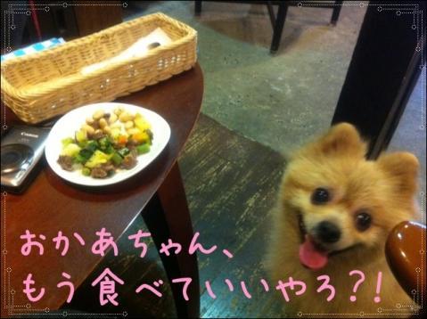 もう食べていいやろ?