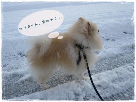 サリちゃん、雪の中で・・・