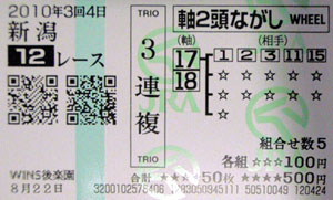 100304nii12R.jpg