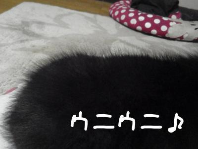 kOZ9D_convert_20111105184815.jpg