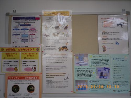 2013年1月26日 病院の掲示板