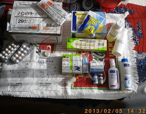 2013年2月2日ラヴィンのお薬類