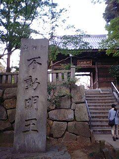 滝不動 (12)