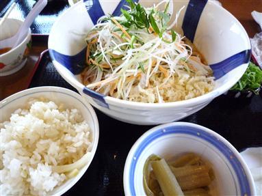 生野菜ぶっかけ