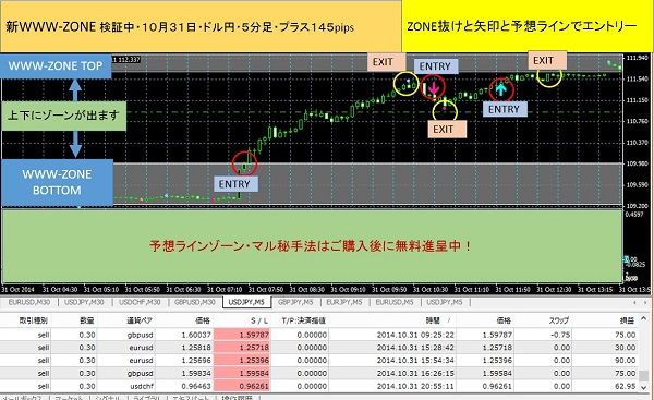 WWW-ZONEブログドルエン600-1031