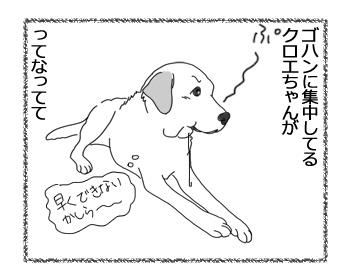 羊の国のラブラドール絵日記シニア!!「ぷー」3