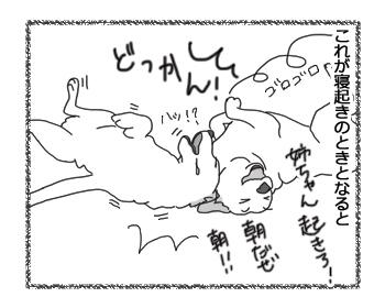 羊の国のラブラドール絵日記シニア!!「朝はおやめよ」3