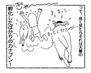 羊の国のラブラドール絵日記シニア!!「男子と虫」4