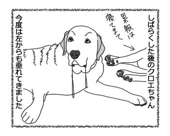 羊の国のラブラドール絵日記シニア!!「クロエちゃん観察日記」2