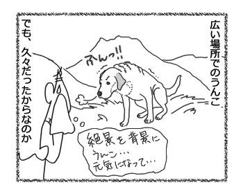 羊の国のラブラドール絵日記シニア!!「どんぐりじゃなくて!?」2