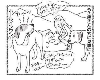 羊の国のラブラドール絵日記シニア!!「どんぐりじゃなくて!?」4