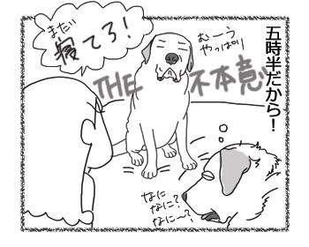 羊の国のラブラドール絵日記シニア!!「十歳の朝」3
