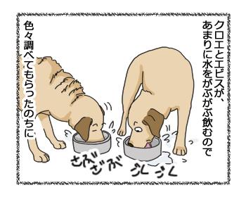 羊の国のラブラドール絵日記シニア!!「ペッツベストさんプロモーション記事1」3