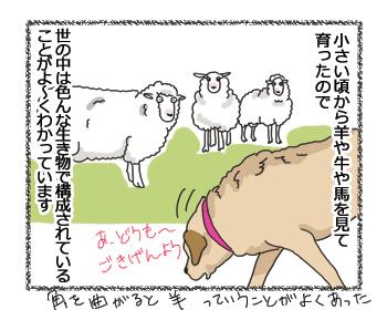 羊の国のラブラドール絵日記シニア!!「ファームドッグへの道のり」3